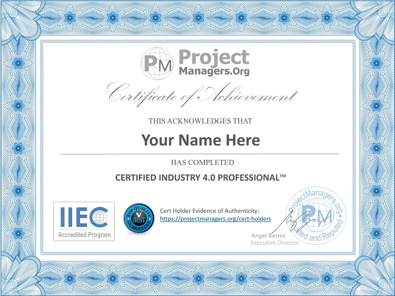 Certified Industry 4.0 Professional